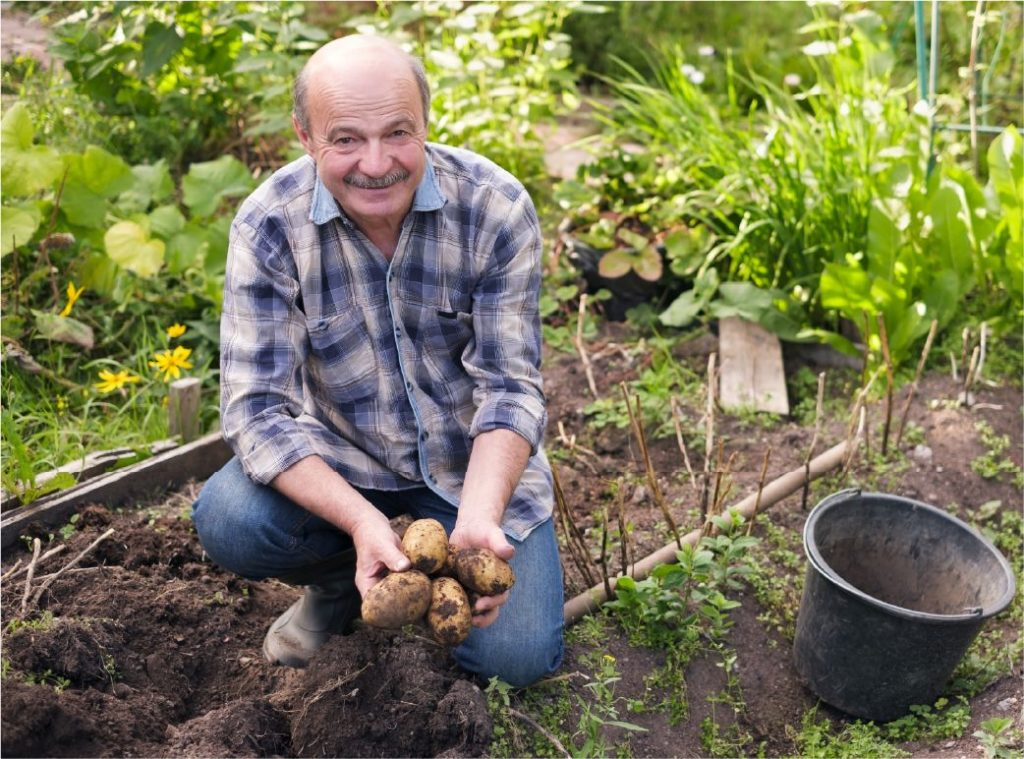 French producer market gardener Finding France
